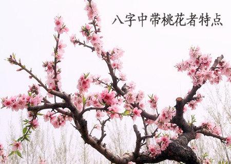 八字中带桃花者特点