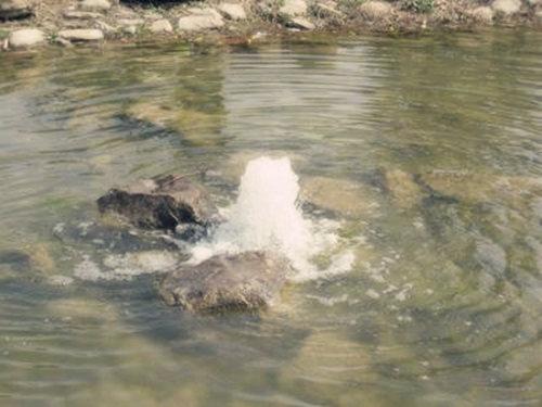 泉中水命是什么意思