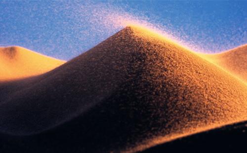 沙中金命是什么意思