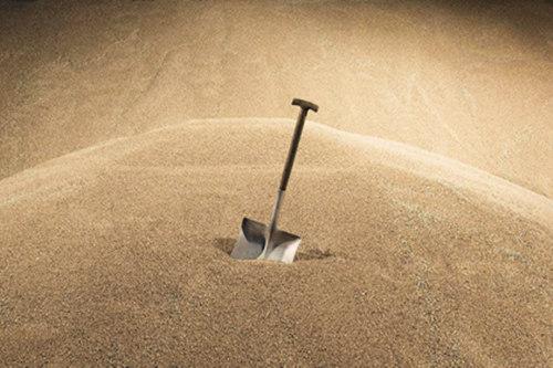 沙中土命是什么意思