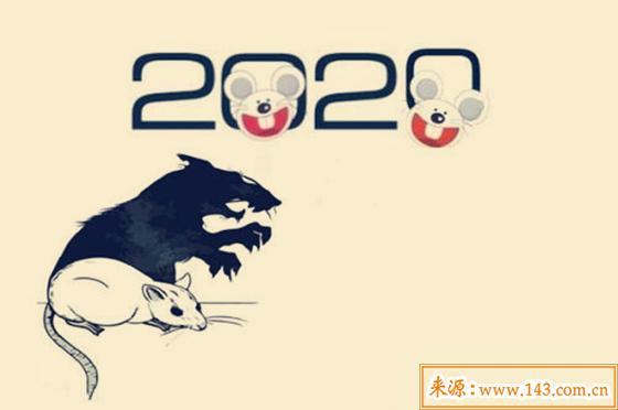 2020年出生的人命运如何