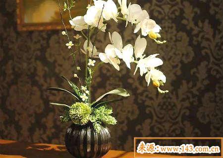 家居鲜花摆放风水