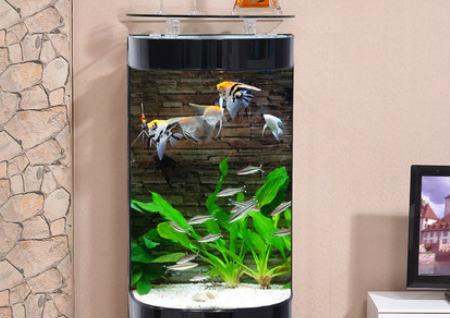 家里鱼缸摆放风水
