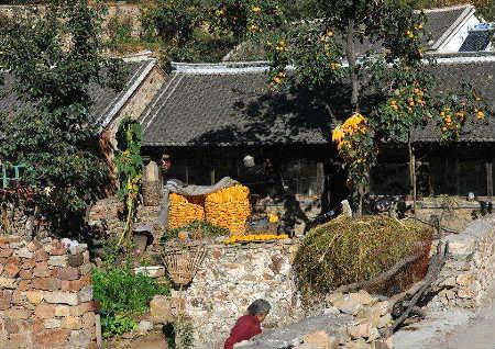 农村庭院风水禁忌