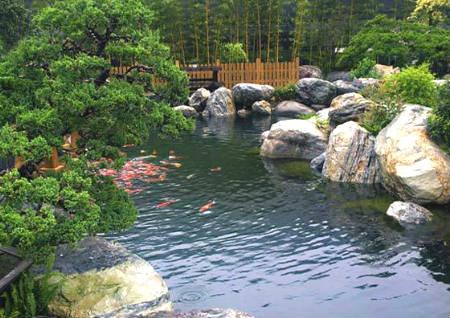 别墅假山鱼池风水