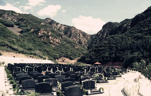 四大墓库八字