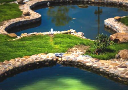 花园水池风水布局