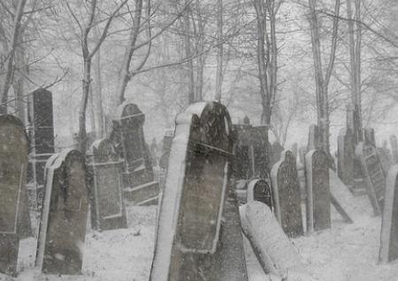 坟墓前最怕放什么东西
