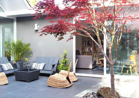 房前屋后栽什么树风水好