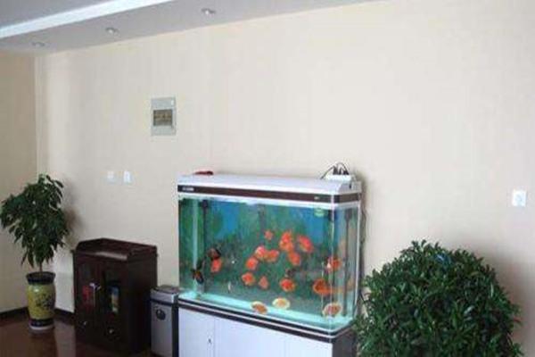 客厅鱼缸风水讲究