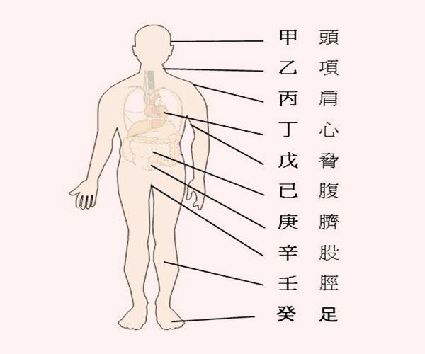 八字推断疾病的步骤及象义
