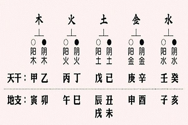 八字入门之干支阴阳关系28.jpg